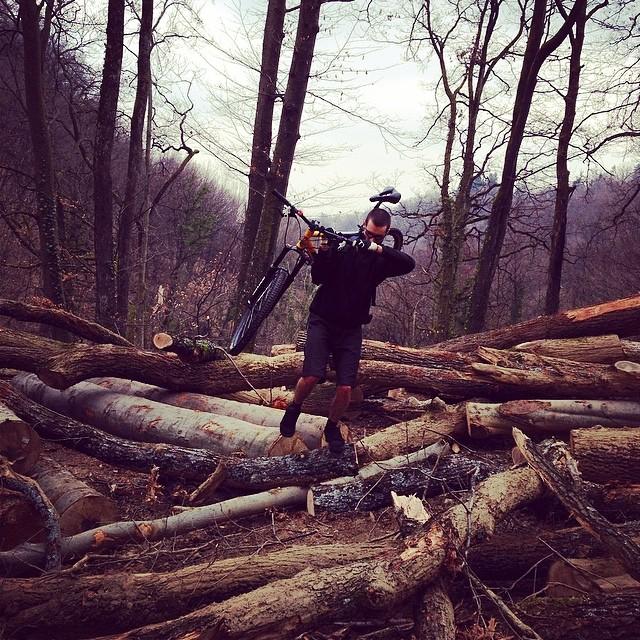 Lumber problems